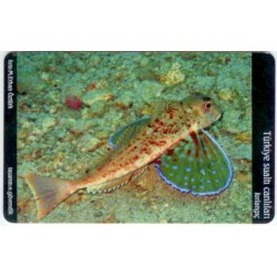 RED SNAPPER-UNDER WATER CREATURE EXP. CARD