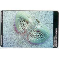 GROWLER-UNDER WATER CREATURE EXP. CARD